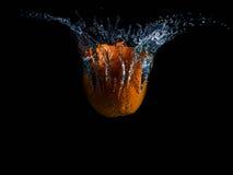 桔子和水飞溅果子 免版税库存照片