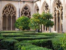 桔子在修道院里 库存照片