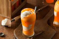 桔子汽水Creamsicle冰淇凌浮游物 免版税库存照片