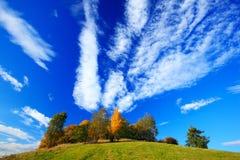 桔子留给树与白色土块的深蓝天空 在日出以后的早晨视图,秋天视图,橙色风景, Rynartice, Boh 免版税库存照片
