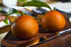 以桔子的形式,餐馆服务- pashtet 免版税库存图片