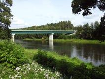 桥梁、植物和河Nemunas,立陶宛 库存照片