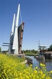 桥梁、运输的小船和野花,荷兰 库存照片