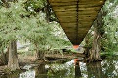 桥梁从下面被看见的由木翼制成 免版税库存照片