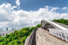 桥梁仿效波浪 带领木的走道停放 新加坡 免版税库存照片