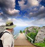 桥梁公园风景木 图库摄影