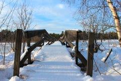 桥梁冬天 库存照片