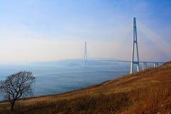 桥梁到Russky海岛。 免版税图库摄影