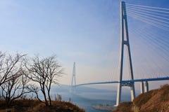 桥梁到Russky海岛。 库存照片