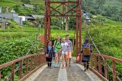 桥梁北sapa越南 免版税库存照片