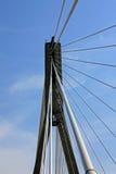 桥梁华沙 库存图片