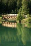 桥梁反映 库存照片