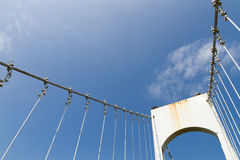 桥梁吊索白色 库存照片