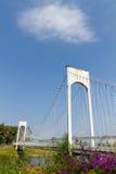 桥梁吊索白色 库存图片