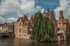 桥梁和叶茂盛树与砖瓦房在运河` s在一个晴天渐近在布鲁日 库存图片
