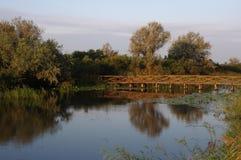 桥梁和湖 库存图片
