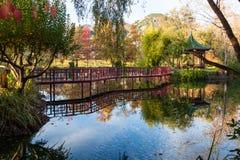 桥梁和眺望台由池塘 库存照片