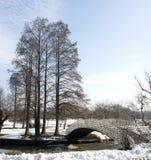 桥梁和结构树 免版税库存照片