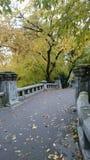 桥梁在公园 库存照片