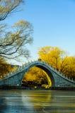 桥梁在冬天 库存照片
