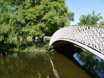 桥梁在布加勒斯特公园  库存图片