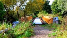 桥梁在森林里 免版税库存照片