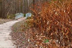 桥梁在森林 免版税图库摄影
