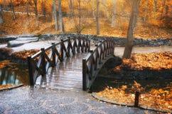 桥梁在秋天公园 免版税库存照片