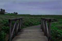 桥梁在蒙大拿de Oro 库存图片