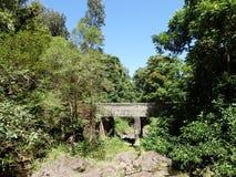 桥梁在路的毛伊向哈纳 免版税图库摄影