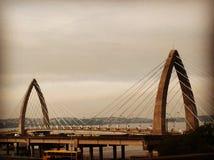 桥梁在里约巴西 库存图片