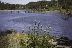 桥梁在Wellfleet, MA鳕鱼角 库存照片