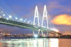桥梁坚持的电缆晚上 免版税库存照片
