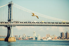 桥梁城市曼哈顿纽约 库存图片