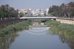 桥梁城市murcia 库存照片