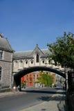 桥梁大教堂基督教会都伯林 免版税库存照片