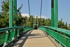 桥梁大步行雪上电车 库存照片