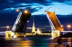 桥梁宫殿在圣彼德堡和开花的玫瑰的晚上 免版税库存照片