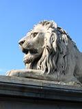 桥梁布达佩斯链匈牙利狮子 免版税库存图片