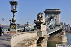 桥梁布达佩斯链子 图库摄影