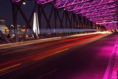 桥梁庭院晚上上海视图 免版税图库摄影