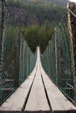 桥梁摇摆 免版税库存图片