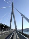 桥梁杜布罗夫尼克市 免版税图库摄影