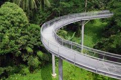 桥梁森林新加坡 库存照片