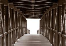 桥梁水平横穿的英尺 免版税库存照片