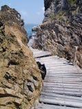 桥梁海边木头 免版税库存照片