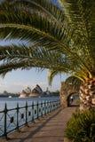 桥梁港口房子歌剧悉尼 免版税库存照片