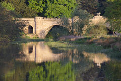 桥梁狮子 库存照片