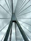 桥梁电缆支持 库存照片