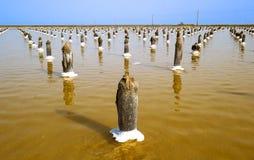 桥梁的基地的柱子盐干燥的在盐湖 免版税库存照片